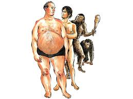 Humans didn't evolve to be obese